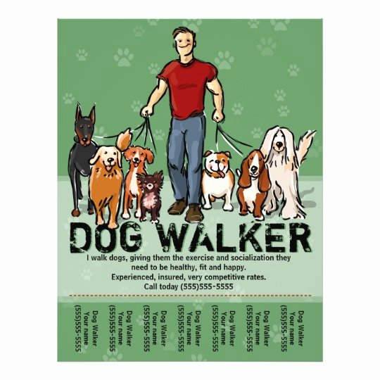 Free Dog Walking Flyer Template New Dog Walker Dog Walking Guy Grn Promotemplate Flyer