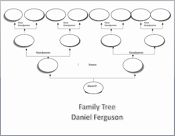 Free Family History Book Template Fresh Family Tree Sample Visio Chart Family History