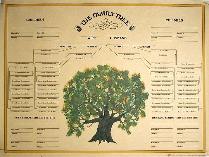 Free Family History Book Template Unique Family Tree Template Blank Family Tree