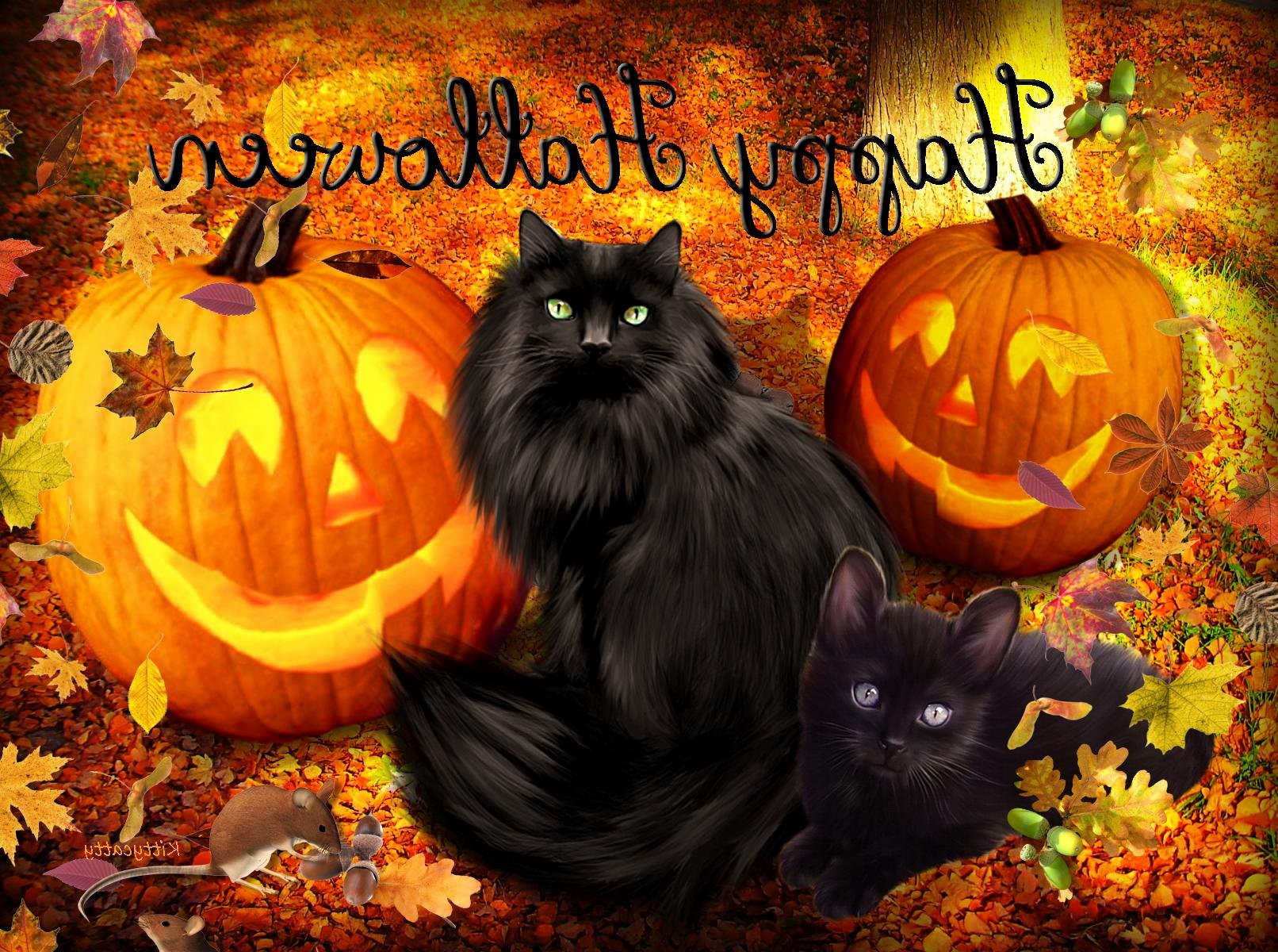 Free Halloween Background Images Inspirational Free Halloween Wallpapers