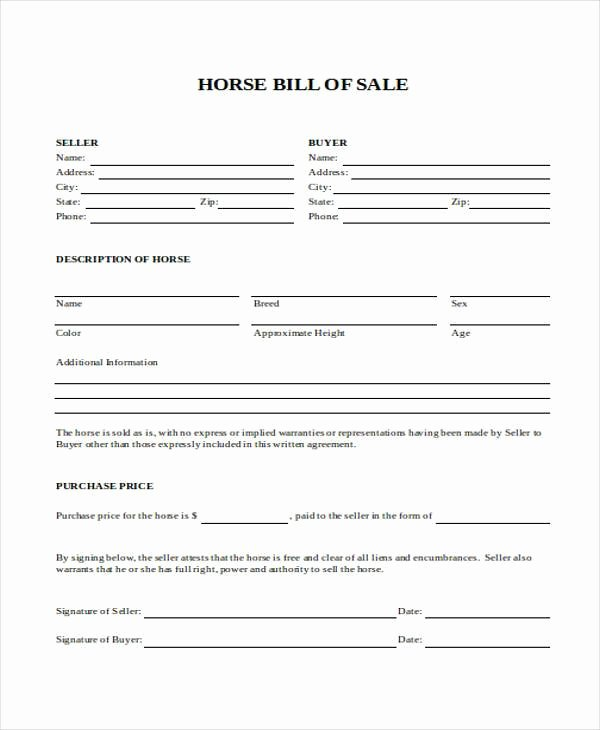 Free Horse Bill Of Sale Best Of Free 36 Bill Of Sale forms In Word