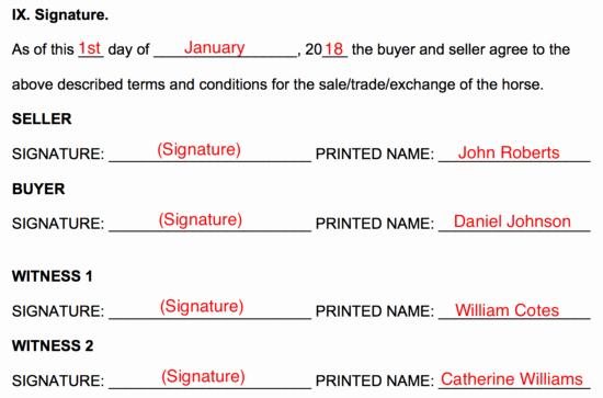 Free Horse Bill Of Sale Elegant Free Horse Bill Of Sale form Word Pdf