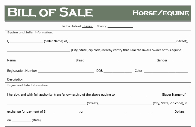 Free Horse Bill Of Sale Inspirational Free Texas Horse Equine Bill Of Sale Template F Road Freedom