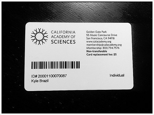 Free Membership Card Template Unique 6 Ways to Use the Membership Card Template Burris Puter forms