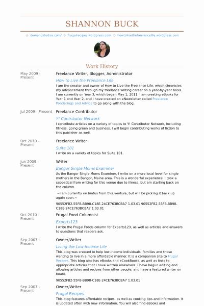 Freelance Writer Resume Sample Luxury Freelance Writer Blogger Administrator Resume Example Work Ideas