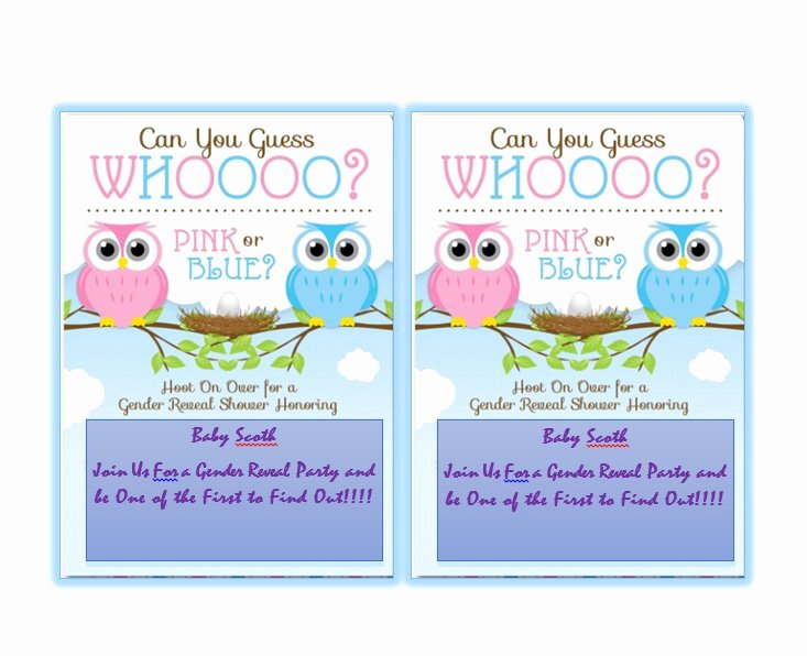 Gender Reveal Invitation Templates Beautiful 17 Free Gender Reveal Invitation Templates Template Lab
