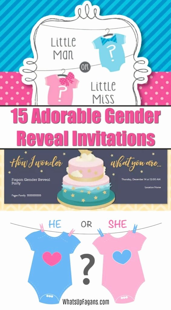 Gender Reveal Party Invitation Wording Elegant 15 Adorable Baby Gender Reveal Party Invitations
