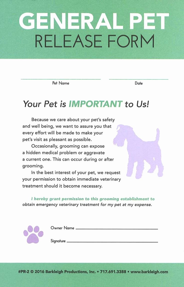 General Media Release form Lovely 25 Best Ideas About Pet Rooms On Pinterest