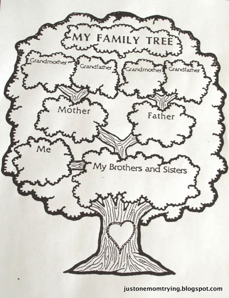 Google Family Tree Template Awesome 73 Best Images About Genealogy Chart On Pinterest