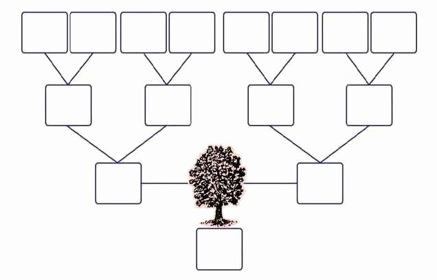 Google Family Tree Template Fresh 12 Best Family Trees Images On Pinterest