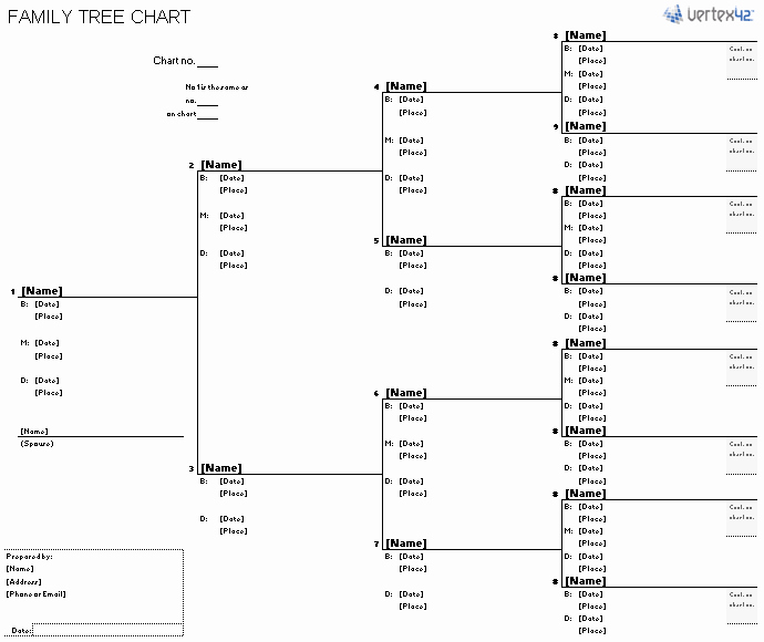 Google Family Tree Template Lovely Free Family Tree Template