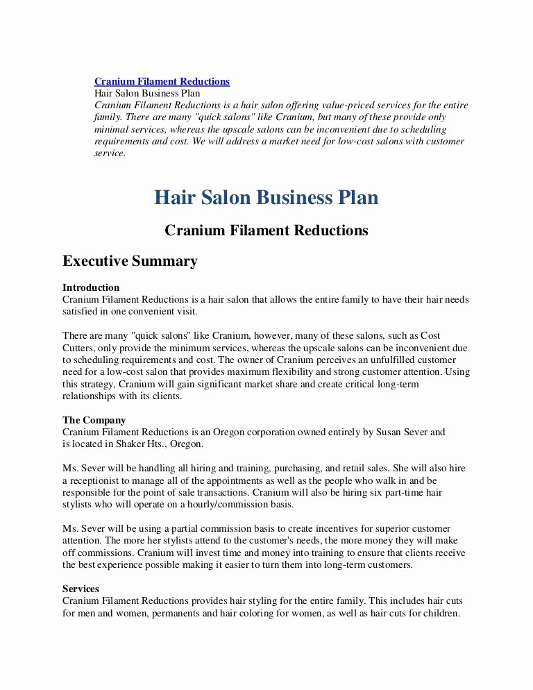 Hair Salon Business Plan Pdf Beautiful Business Plan Hairl Salon