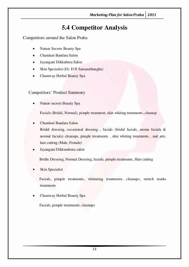 Hair Salon Business Plan Pdf Inspirational Marketing Plan for Salon Praba