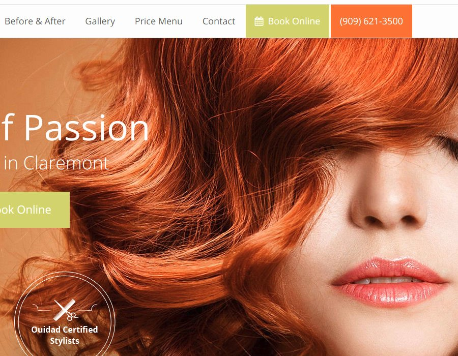 Hair Stylist Bios Samples Lovely Web Design for Hair Salons – Web Design Service