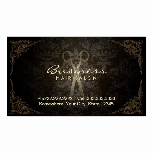 Hair Stylist Business Cards Templates Inspirational Vintage Framed Damask Hair Salon Appointment Business Card Template