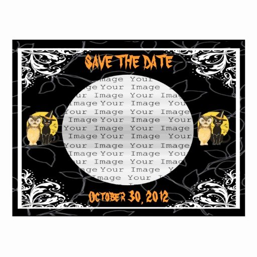 Halloween Wedding Save the Date Best Of Cat & Owl Halloween Wedding Save the Date Postcard