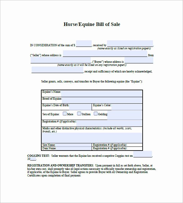 Horse Bill Of Sale Beautiful Horse Bill Of Sale – 8 Free Sample Example format Download