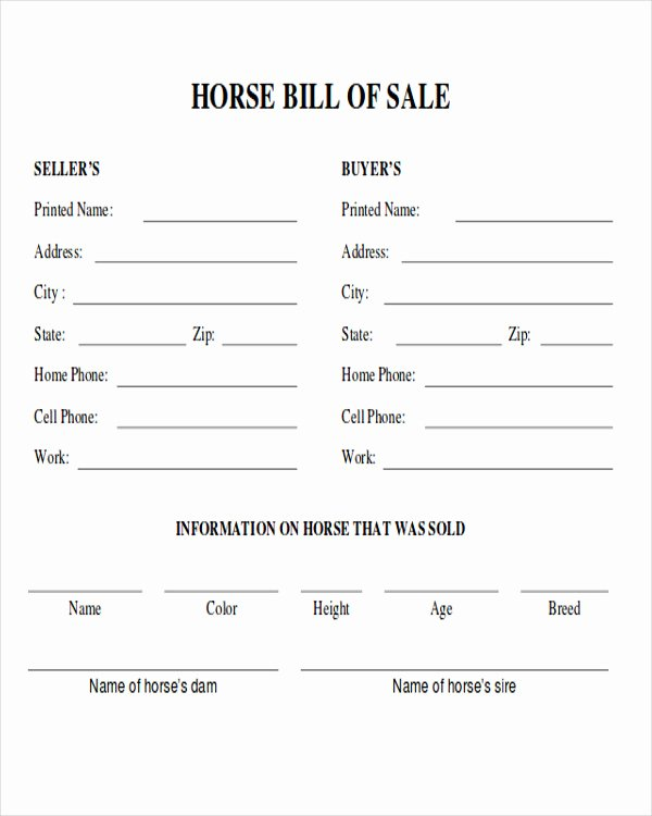 Horse Bill Of Sale form Fresh 9 Horse Bill Of Sale Examples In Word Pdf