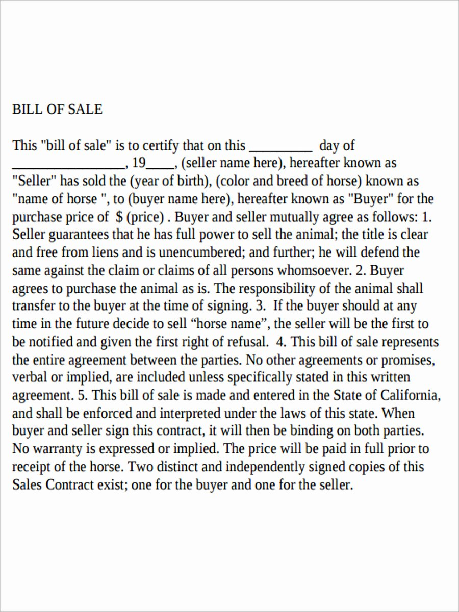 Horse Bill Of Sale forms Unique Free 5 Horse Bill Of Sale forms In Samples Examples formats