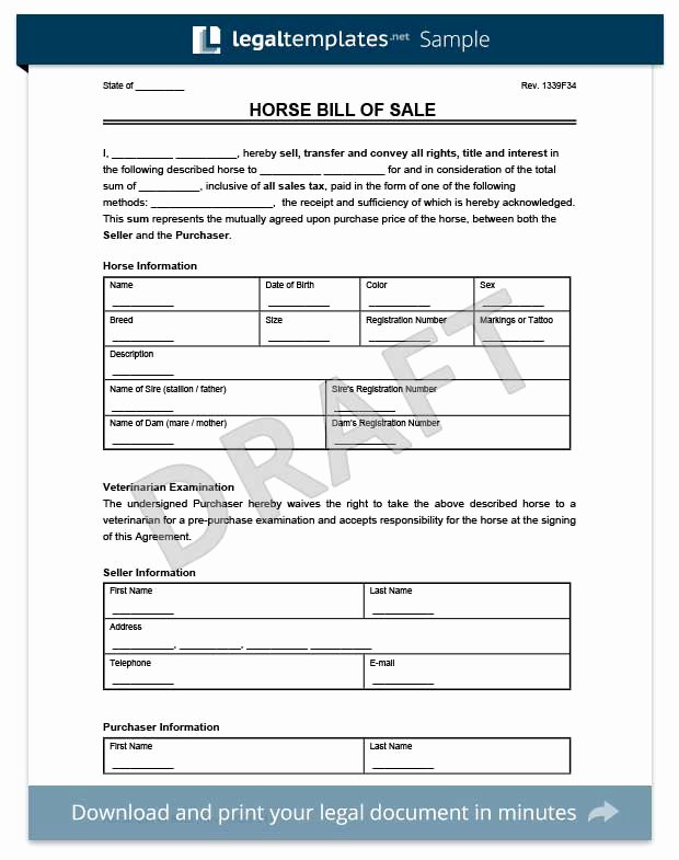 Horse Bill Of Sale Pdf Awesome Create A Firearm Bill Of Sale form