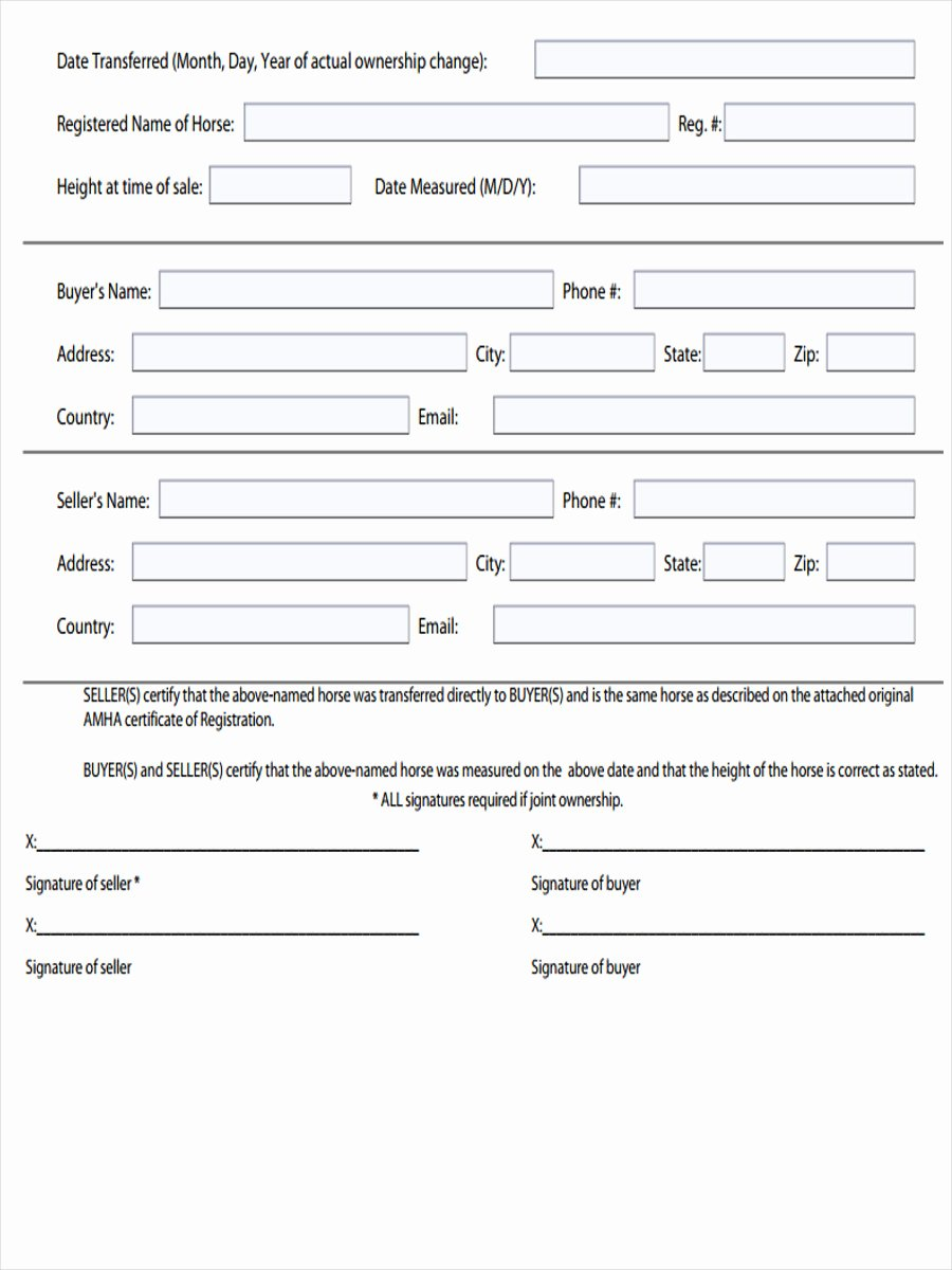 Horse Bill Of Sale Pdf Awesome Free 5 Horse Bill Of Sale forms In Samples Examples formats