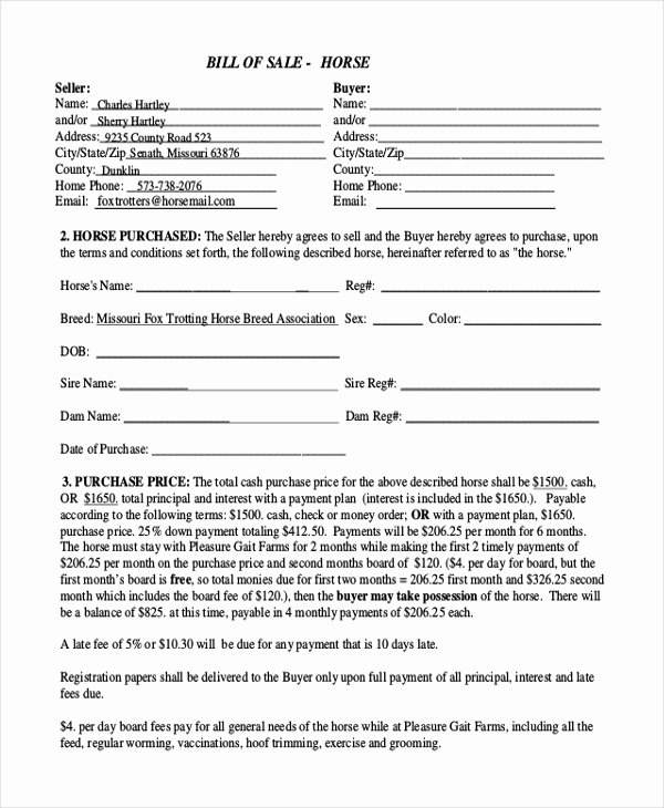 Horse Bill Of Sale Pdf Lovely Simple Bill Of Sale form Sample 9 Free Documents In Pdf