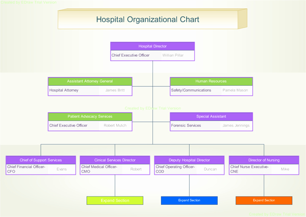 Hospital organizational Chart Examples Awesome 7 Best Of Hospital Departments organizational Chart