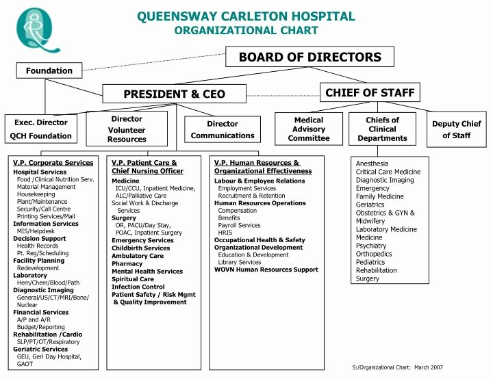 Hospital organizational Chart Examples Awesome Ppt Queensway Carleton Hospital organizational Chart