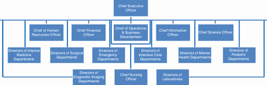 Hospital organizational Chart Examples Beautiful 1 Typical organizational Chart for A Hospital