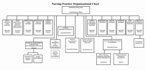Hospital organizational Chart Examples Best Of organizational Chart Nursing at Strong Memorial Hospital