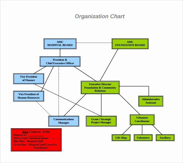 Hospital organizational Chart Examples Elegant Sample Hospital organizational Chart 9 Documents In Pdf
