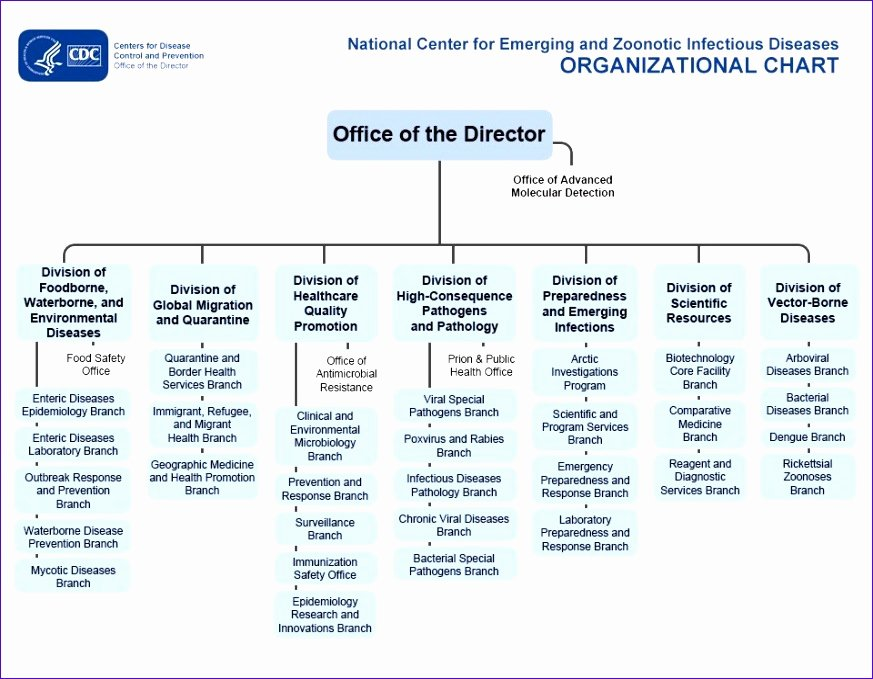 Hospital organizational Chart Examples Inspirational 9 organization Chart Excel Template Exceltemplates