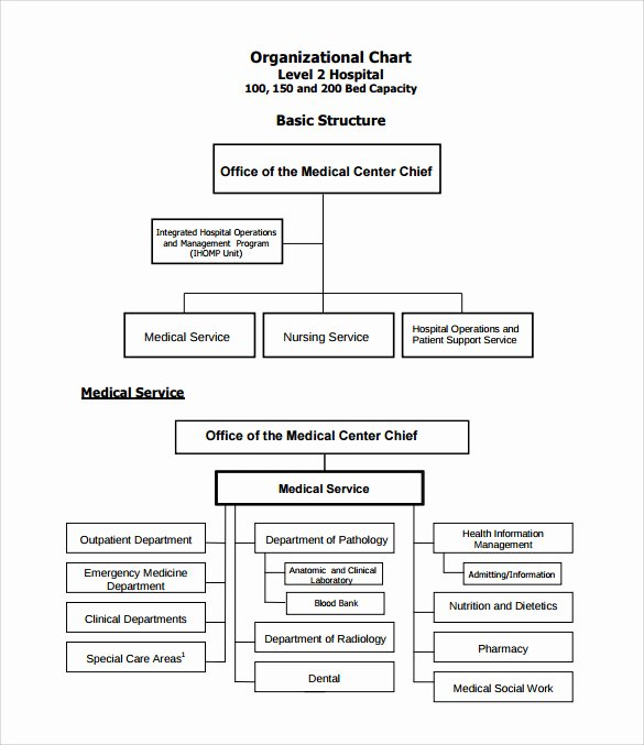 Hospital organizational Chart Examples Lovely Sample Hospital organizational Chart 9 Documents In Pdf