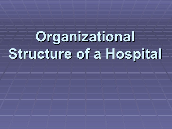 Hospital organizational Chart Examples Unique organizational Structure Of A Hospital
