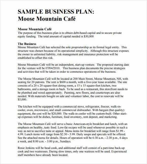 Hotel Business Plan Pdf Lovely Sample Business Plan Template