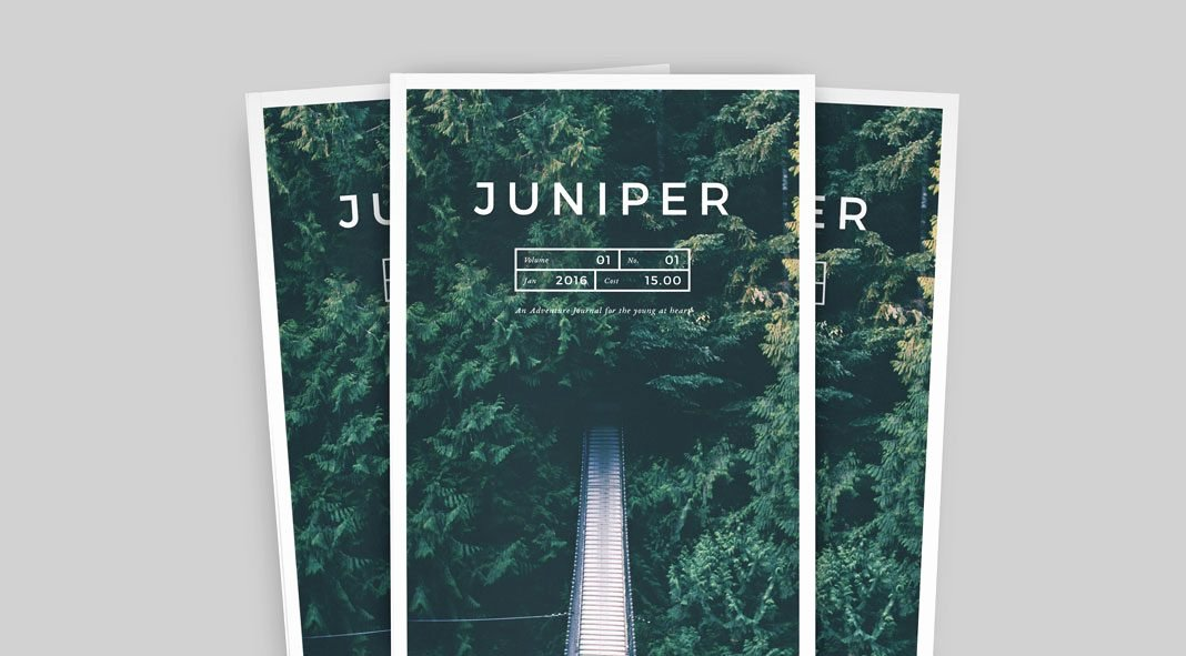 In Design Portfolio Templates Inspirational Juniper Adobe Indesign Magazine and Portfolio Template