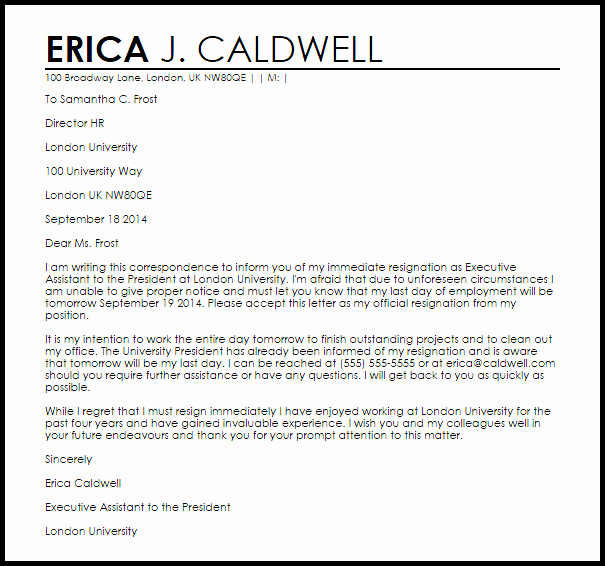 Independent Contractor Resignation Letter Unique Immediate Resignation Letter Resignation Letters