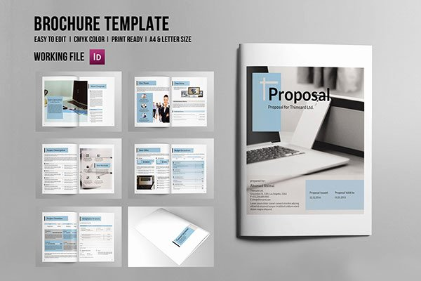Indesign Business Plan Template Elegant Indesign Business Proposal On Pantone Canvas Gallery
