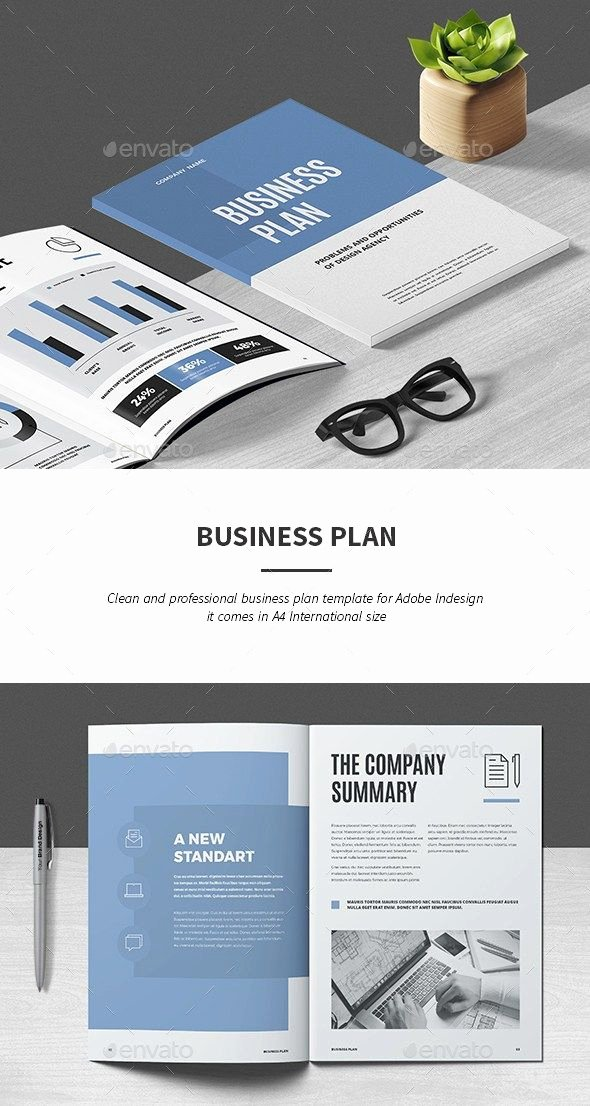Indesign Business Plan Template New 30 Indesign Business Proposal Templates Brochure Templates