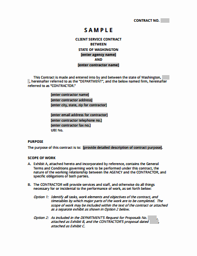 It Support Contract Template Awesome Service Contract Template