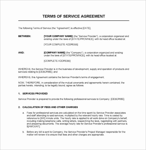 It Support Contract Template Unique Service Contract Template