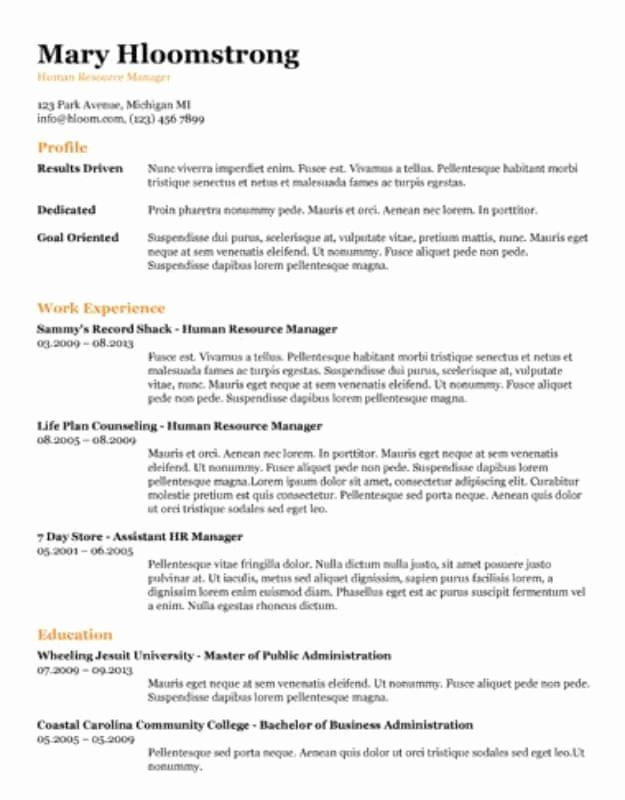 Job Description Template Google Docs Awesome 29 Google Docs Resume Template to Ace Your Next Interview