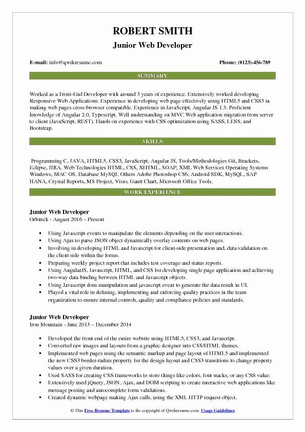 Junior Web Developer Resume Beautiful Junior Web Developer Resume Samples