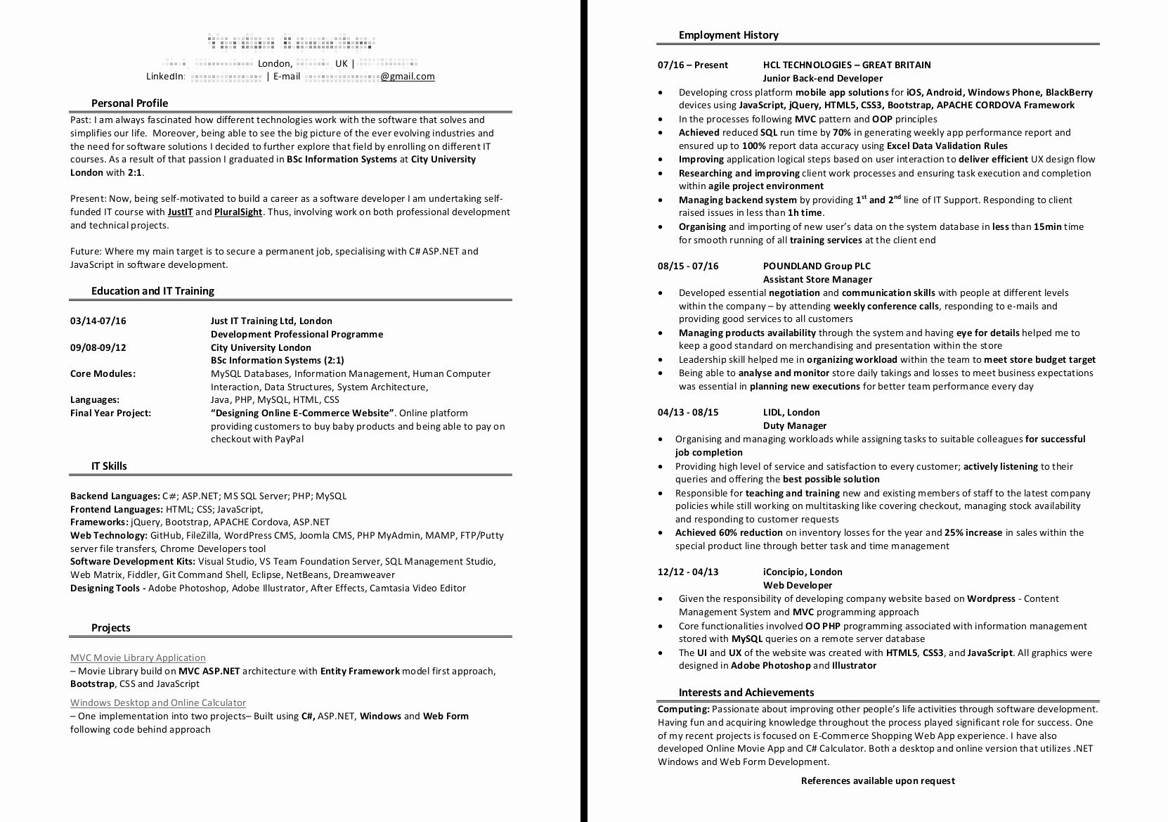 Junior Web Developer Resume Inspirational Back End Developer Cv Examples