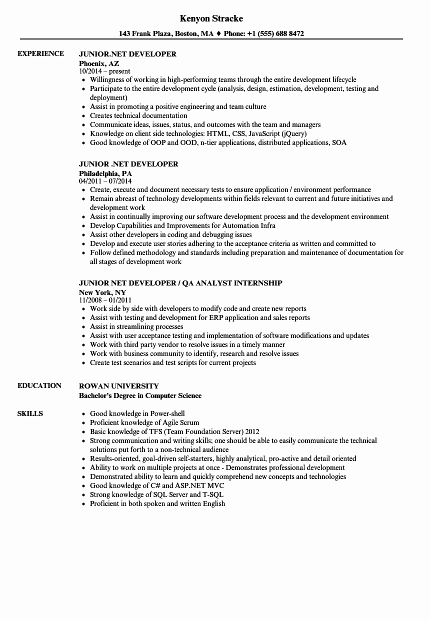 Junior Web Developer Resume Lovely Junior Net Developer Resume Samples
