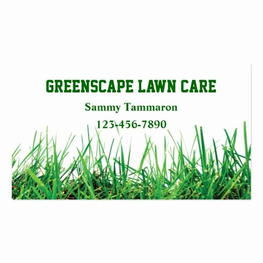 Landscape Business Card Template Awesome Lawn Care and Landscaping Business Card