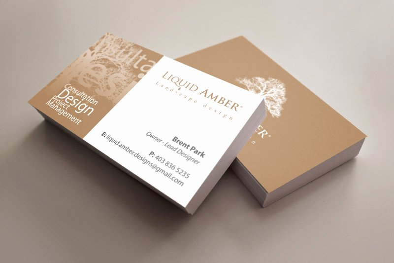Landscape Design Business Cards Best Of Branding Design for Calgary Landscaping Pany Digital Lion
