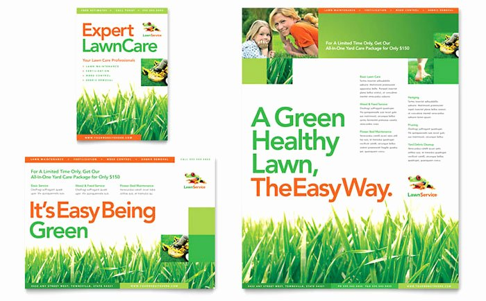 Lawn Maintenance Flyer Ad Template Design HM