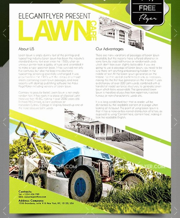 Landscape Flyer Template Free Elegant 27 Landscaping Flyer Templates Free & Premium Download