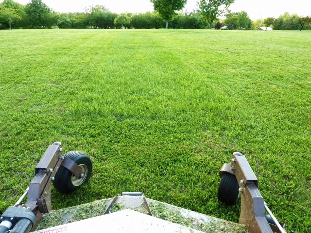 Lawn Care Estimate form Fresh the Ultimate Guide to Our Free Lawn Care Estimate Template